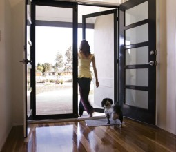 ClearShield Stainless Security Doors
